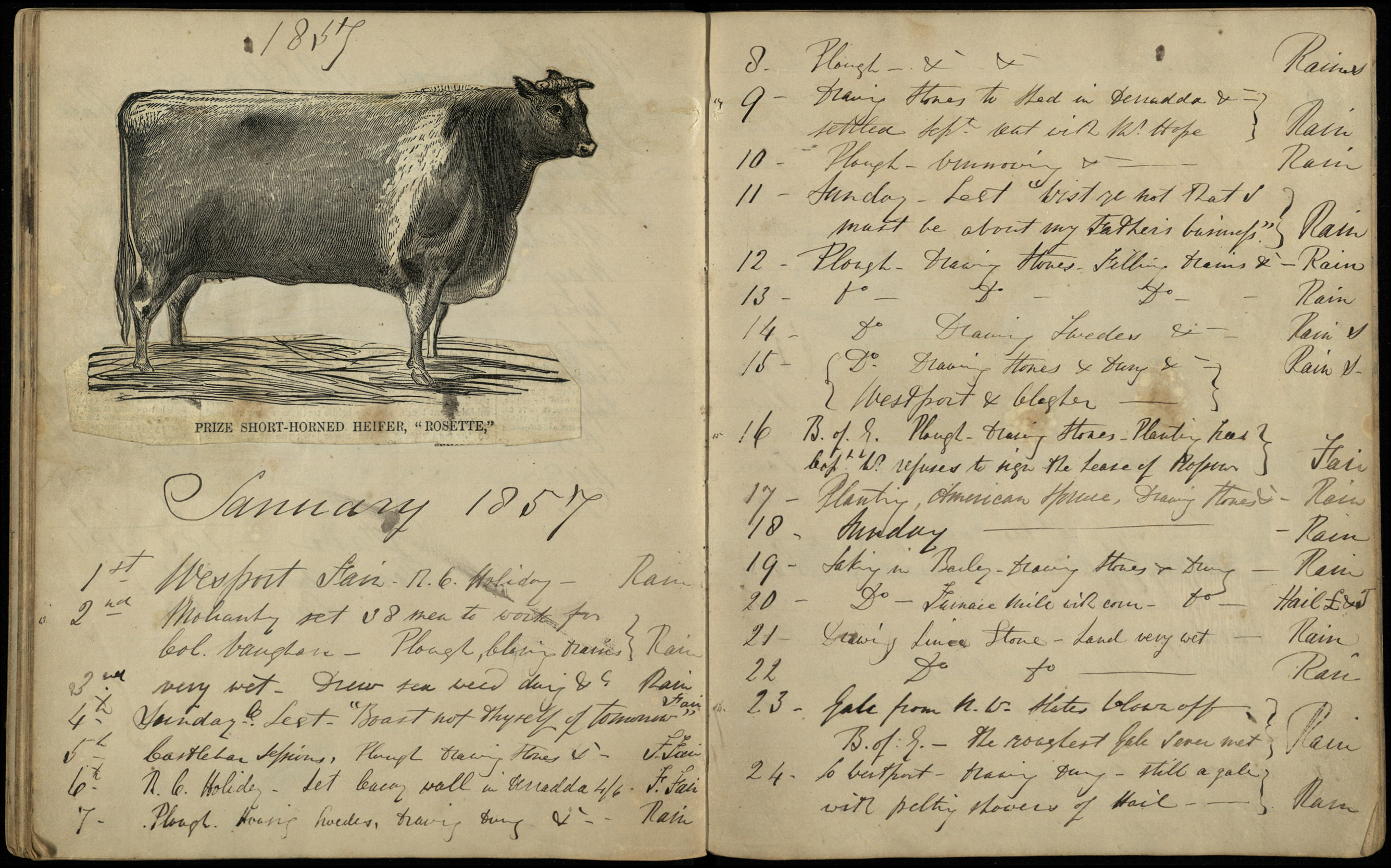 Diaries of John and Arthur Oram